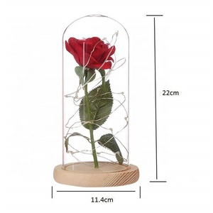 Buy glass cloche bell jar forever roses in glass case