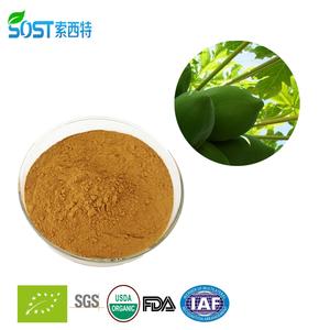 Alibaba china herbal pawpaw extract
