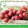 High quality red globe grapes fresh grapes pricepe