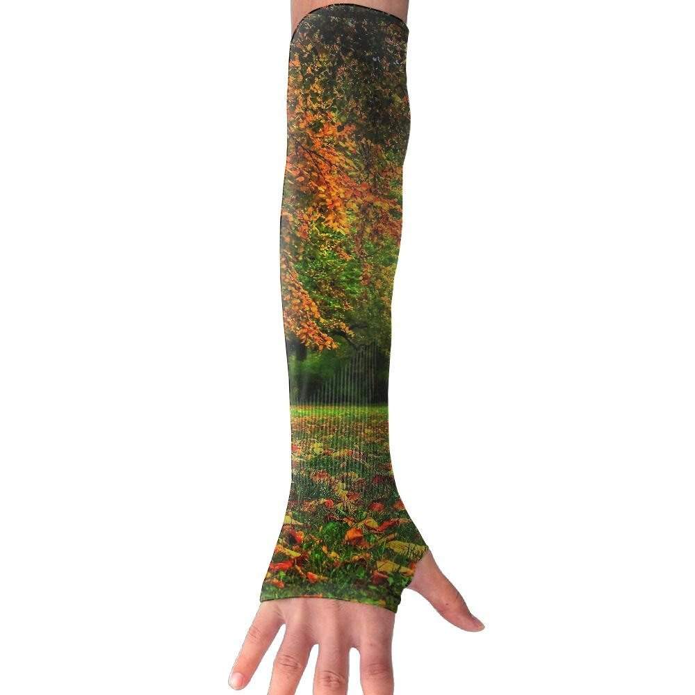 Beautiful Autumn Trees UV Protection Cooler Arm Sleeves Unisex Men Women Sun Protection Arm Cover Sleeve For Bike/Hiking/Running/Golf 1 Pair