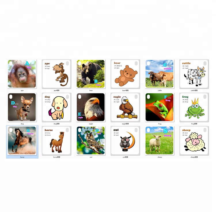 kid phonics english alphabet and pronunciation 3d flash card support customize