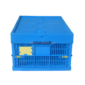 Plastic vegetable packaging transport container with lid