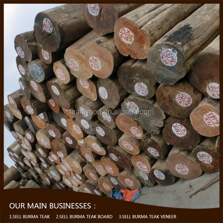 sawn burma teak round logs with chinese government export quota