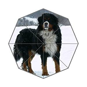 Animals Dog Adult Bernese Mountain Dog in the snow Customized Good Quality Printing Umbrella