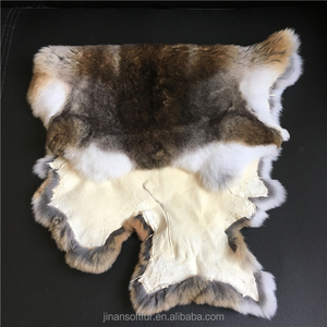 Large pelt rex rabbit fur skin thick and soft hairs