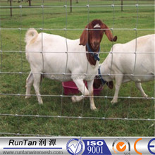 China manufacturer cheap fence for goats( OEM&ODM )