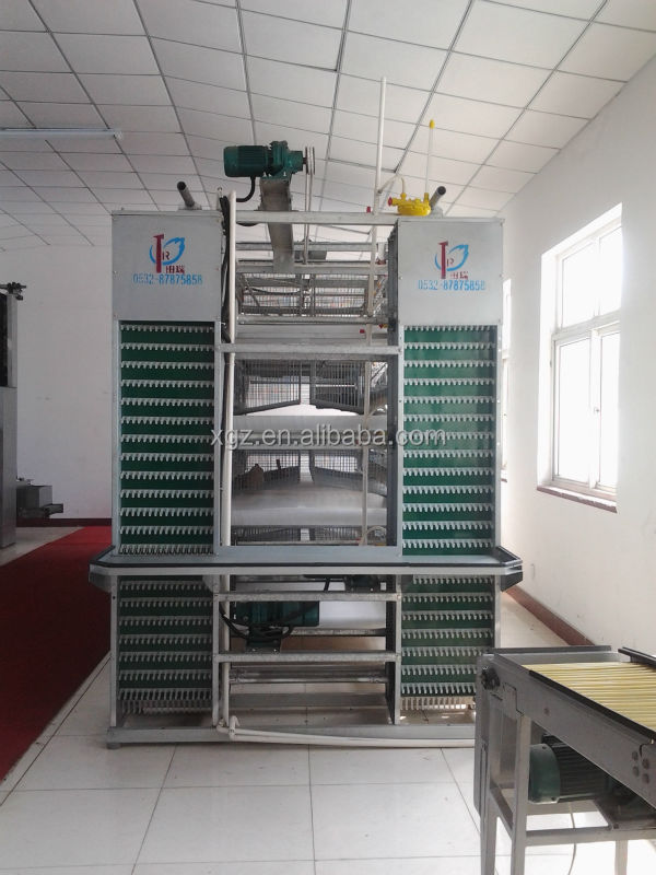 Chinese Modern automatic steel structure poultry chicken farm house