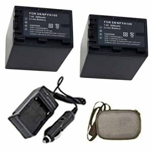 ValuePack (2 Count): Extended Life Replacement Digital Camera and Camcorder Battery PLUS Mini Battery Travel Charger for Sony NP-FH100, DCR: SR40, SR42, SR60, SR62 - Hard Case Camera Bag