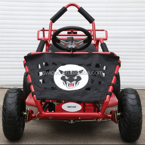 1800W brushless kids adult electric go kart,racing kart