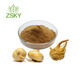 GMP Certified Manufacturer Supply Top Quality Maca Extract