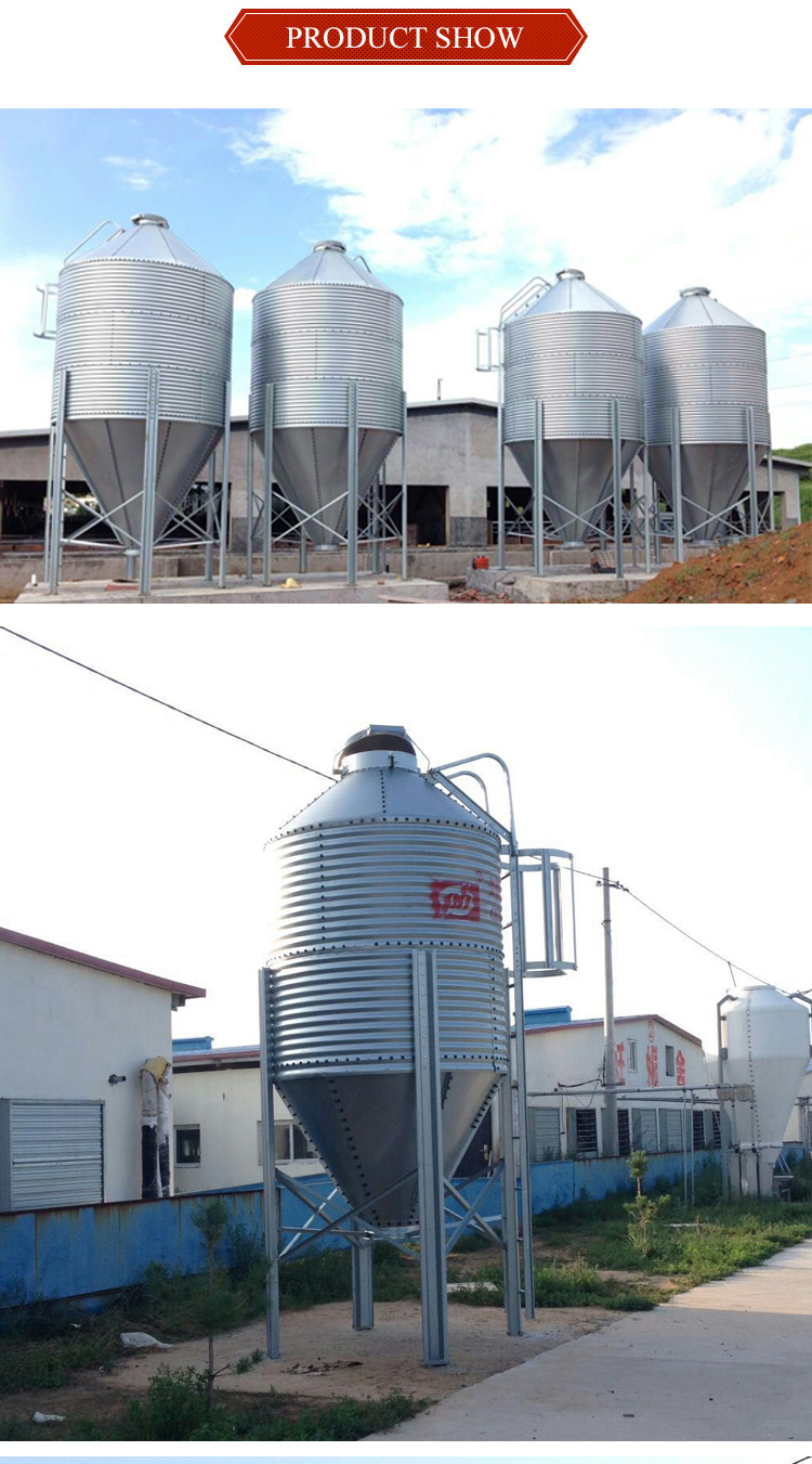 Large capacity poultry house auger feeding silo