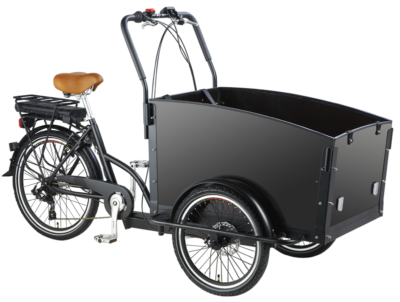 2015 New Hot Denmark Popular Two Front Wheels Tricycle Bike For