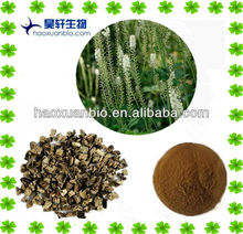 Natural Black cohosh extract /Triterpene 2.5%-8%