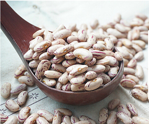 Sugar Beans in south africa/ Price for sugar beans/ Light Speckled Kidney Beans/ LSKB