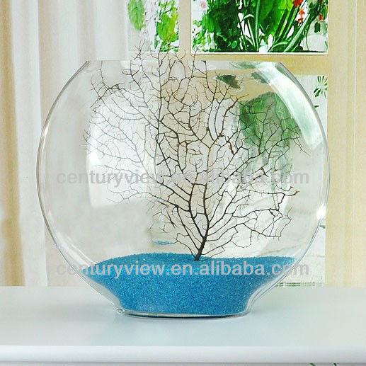 home decoration fish bowl shaped clear glass vase wholesale