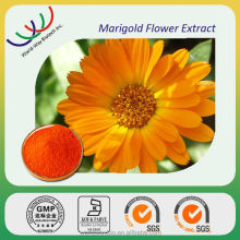 Chinese eye healthy herbal extract lutein 10% , free sample for trial marigold flower extract lutein