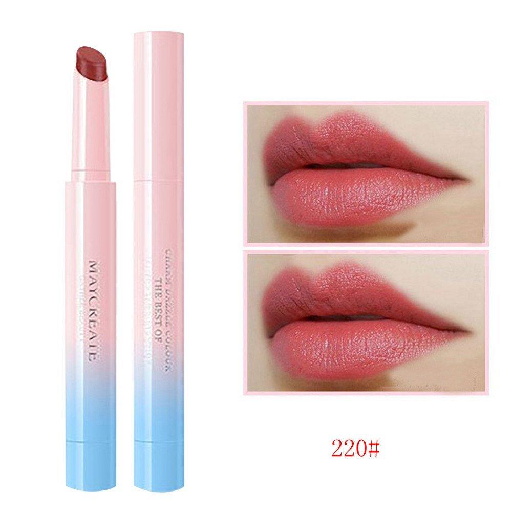 Hot Sale! Lipstick Hosamtel Sexy Long Lasting Lipstick Waterproof Lip Makeup Matte Lip Stains Lip Gloss Lip Pencil Cosmetics Double Colors Lipstick Tube Beauty Lip Makeup Tool (220#)
