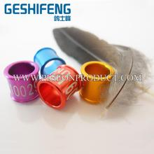 Super quality factory price live canary birds all you need