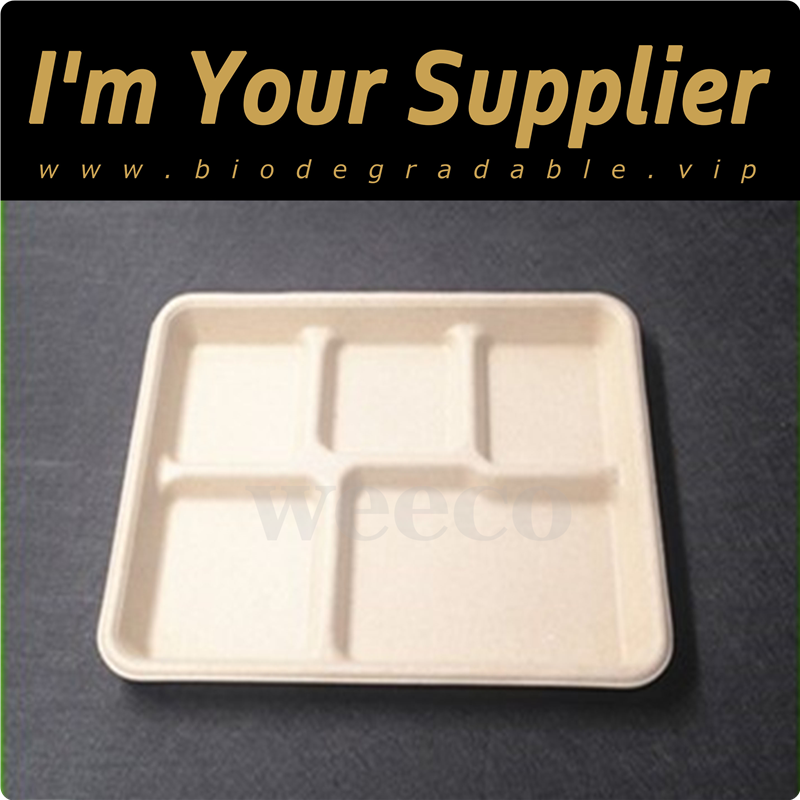 Catering food container compostable disposable sugarcane pulp food tray