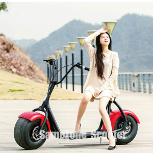 Vespa 2000W E Scooter/Electric Scooter/Roller/Moped/Motorcycle with Removeable /Detachable/Portable Lithium Battery EEC
