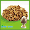 high quality and hot sales natural burdock extract oil