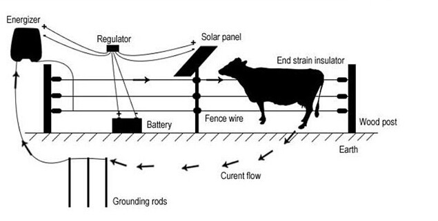lanstar portable animals fencing product manage pig and cow in farm and be protected solar pulse