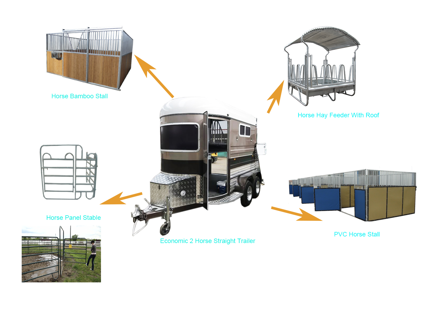Luxury 2/3 Straight Customized Horse Semi Trailer With Cabinet