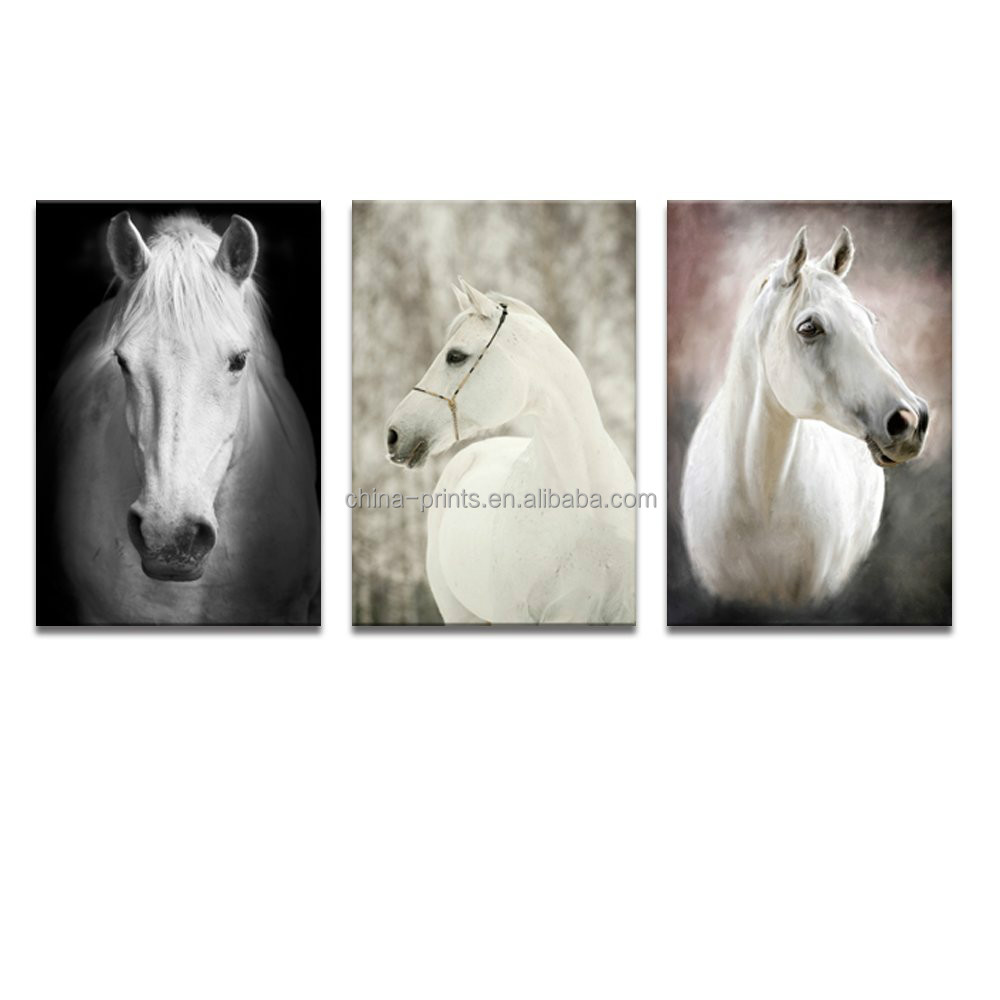 Canvas Wall Art Prints White Horse Photo Prints for Home Decor House Warming Gift