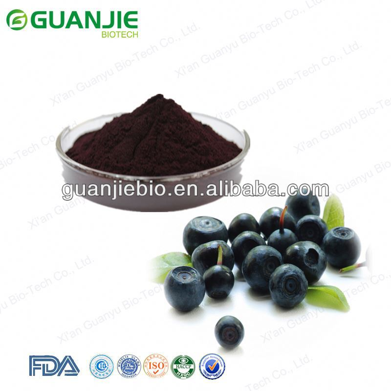 Top Quality Organic Acai Berry Powder
