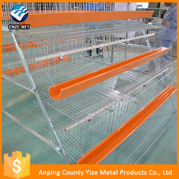 chicken farm building/automatic broiler chicken cages/chicken broiler house design