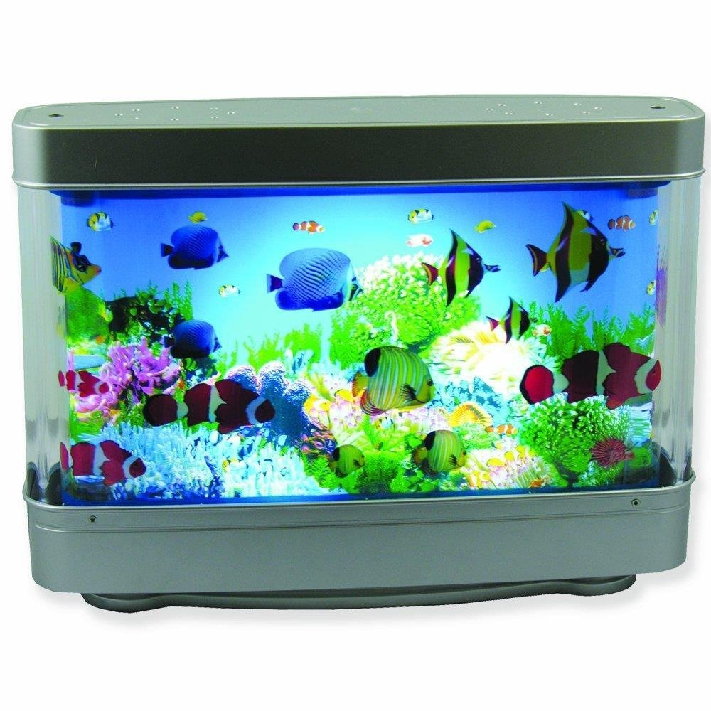 Wholesale Tropical Aquarium Fish Online Buy Best Tropical Aquarium