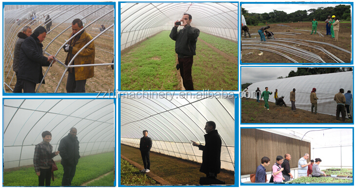 Large Plastic Tunnel Greenhouse For Vegetables/flowers