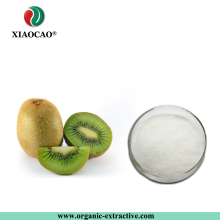 100% Natural Organic Dried Kiwi Fruit Powder/ Kiwi Fruit Extract Price