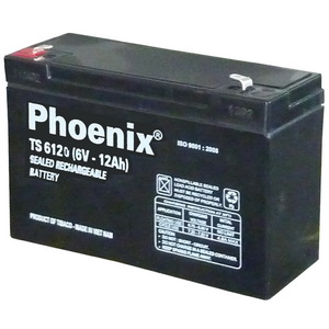 TS6120 / 6V-12AH Battery For Medical equipment