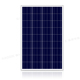 RAGGIE 100W Poly Solar Panel 105% Test Power