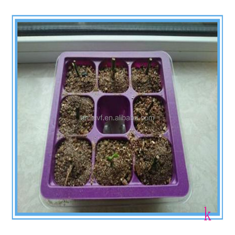 Durable Clear Plastic Nursery Tray Biodegradable Seed Tray