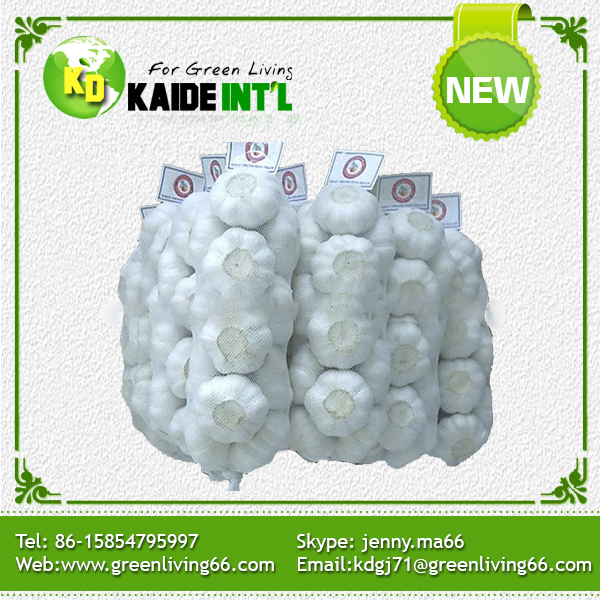 World Best Selling Products Many Heads China Garlic