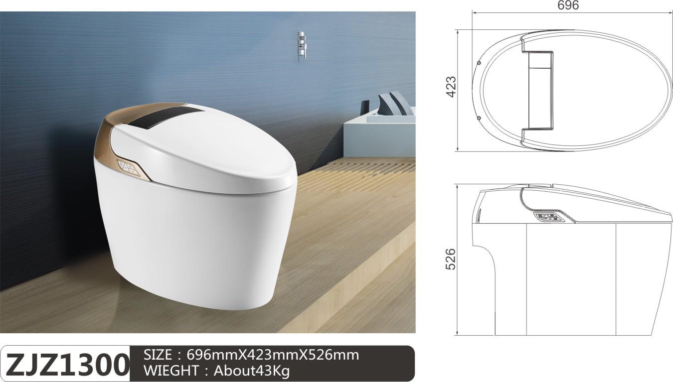 2019 Latest Tankless WC Intelligent Smart Toilet ZJZ-1300