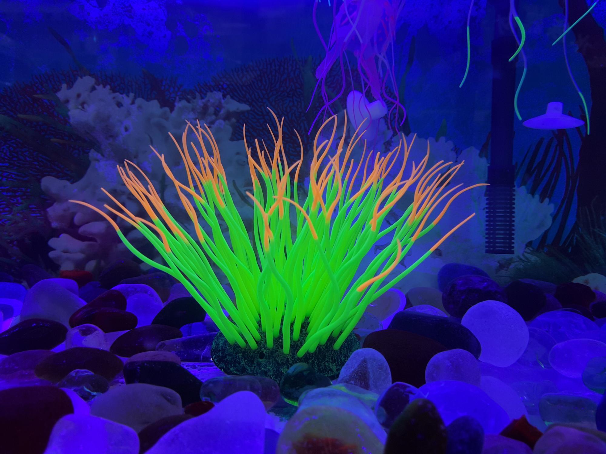 Silicon Komponenten Soft Gefalschte Seeanemone Artificial Korallen Fur Indoor Fisch Aquarium Dekoration Buy Kunstlichen Korallen Fur Aquarium Dekoration Kunstliche Aquarium Fur Korallen Kunstliche Korallenriff Aquarium Product On Alibaba Com