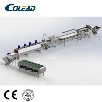 Palm dates processing line/ production line cleaning/washing/drying machinefrom Colead sample