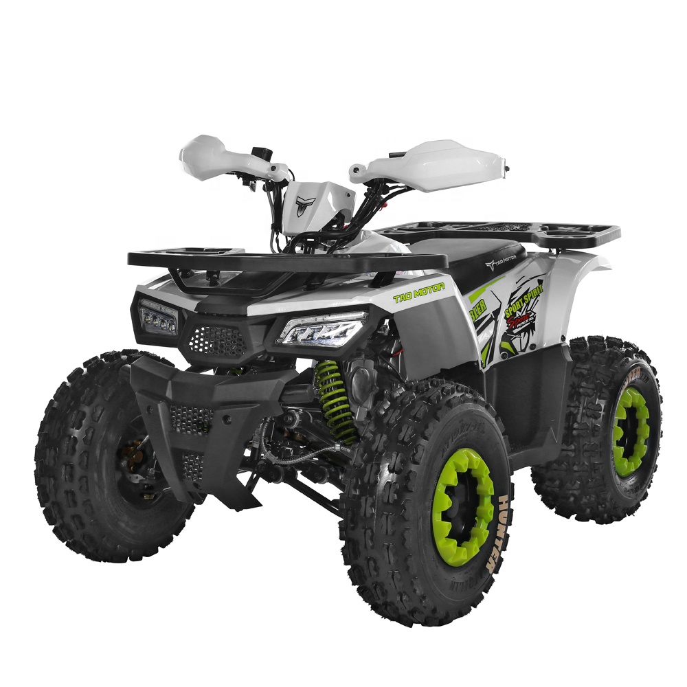 Tao Motor Hunter II 125 Chain Drive ATV 125cc 와 EPA CE Certificate