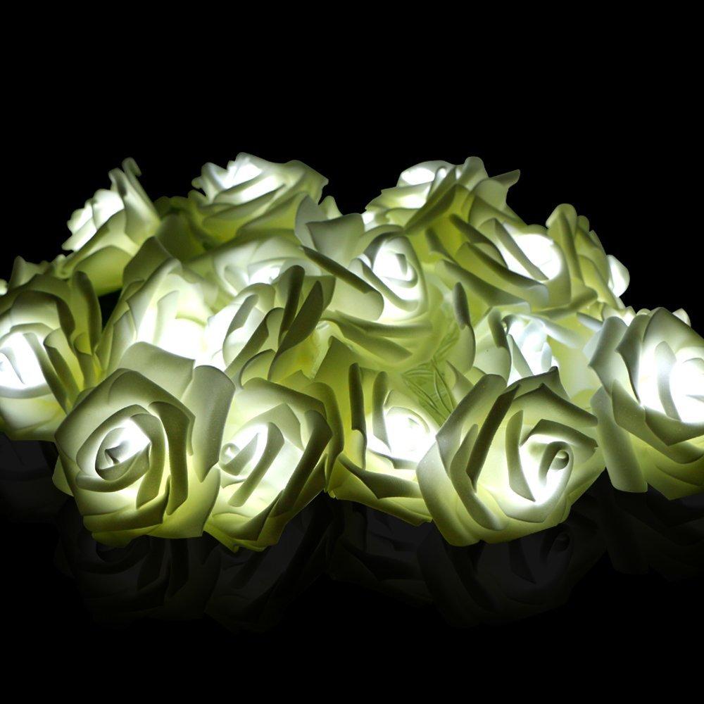 Buy Rose Flower String Lights Rusee 21ft 20 Led Wedding Decorations