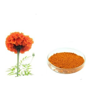 100% Natural Marigold Extract Lutein5% 20% 40% Zeaxanthin UV/HPLC