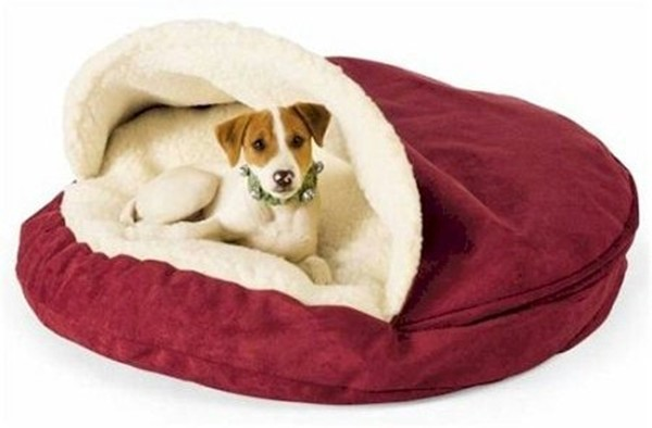 Snug And Cozy Dog Beds