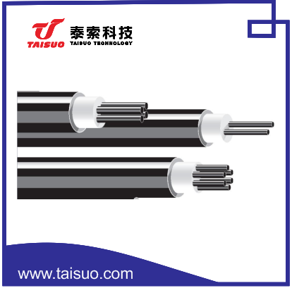 Type E Mineral Insulated Thermocouple Mi Cable Buy