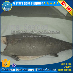 China export fresh blue marlin fish frozen oilfish