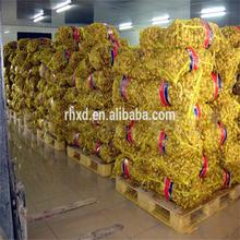 importing countries chinese indonesian fresh ginger