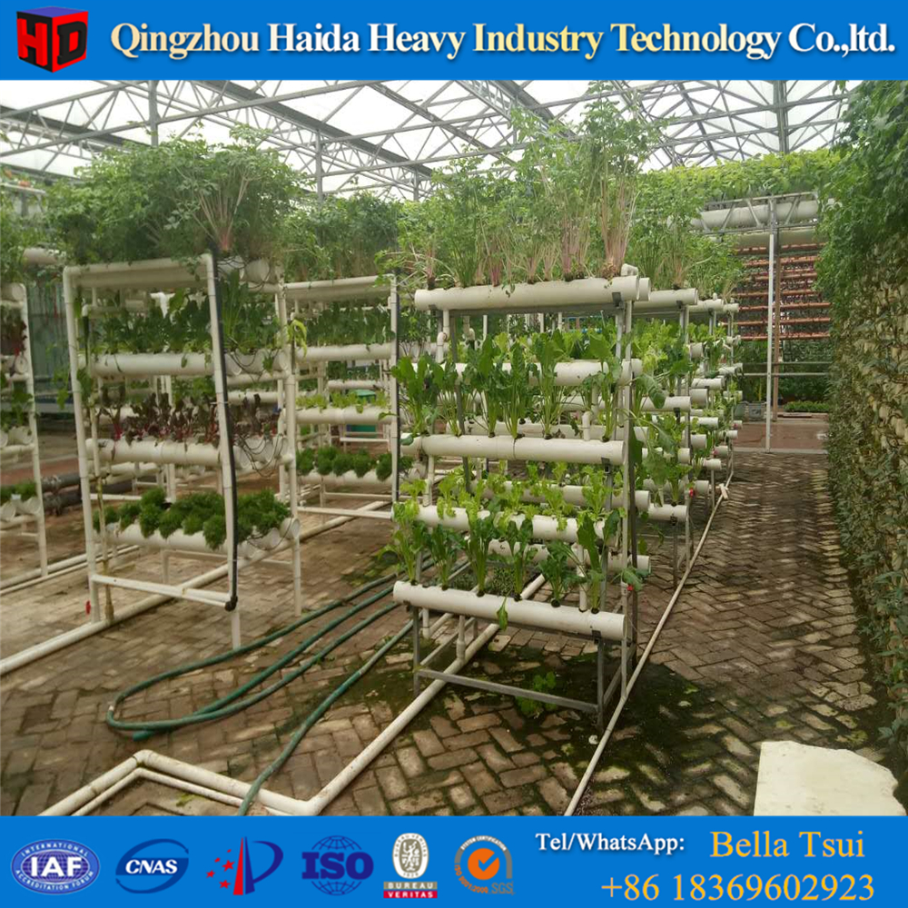 Greenhouses tensile structure with Hydroponic system