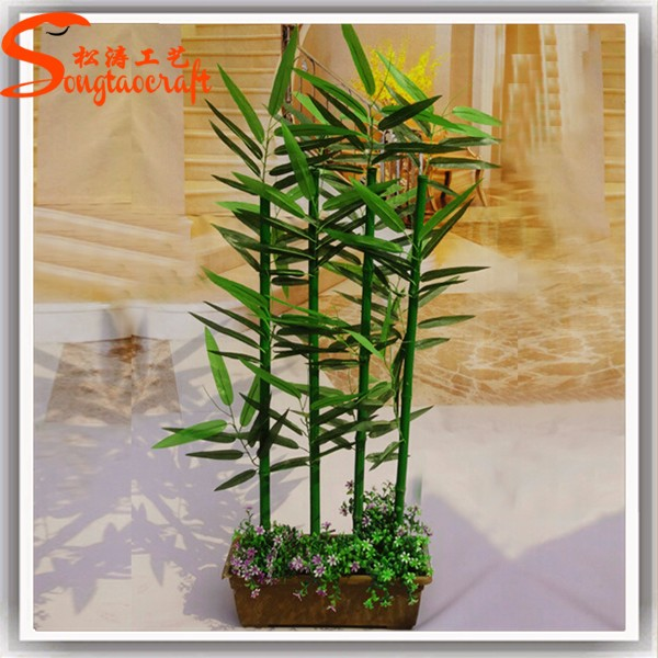 Wholesale Indoor Chinese Bamboo Plant For Home Decoration Plastic