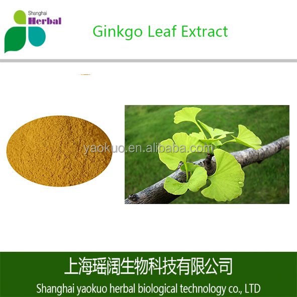Natural Ginkgo Biloba Extract/Ginkgo Leaf Extract Powder